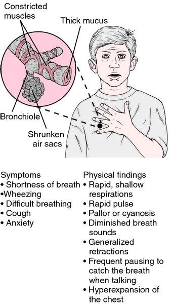 attack meaning asthma attack definition of asthma attack by dictionary