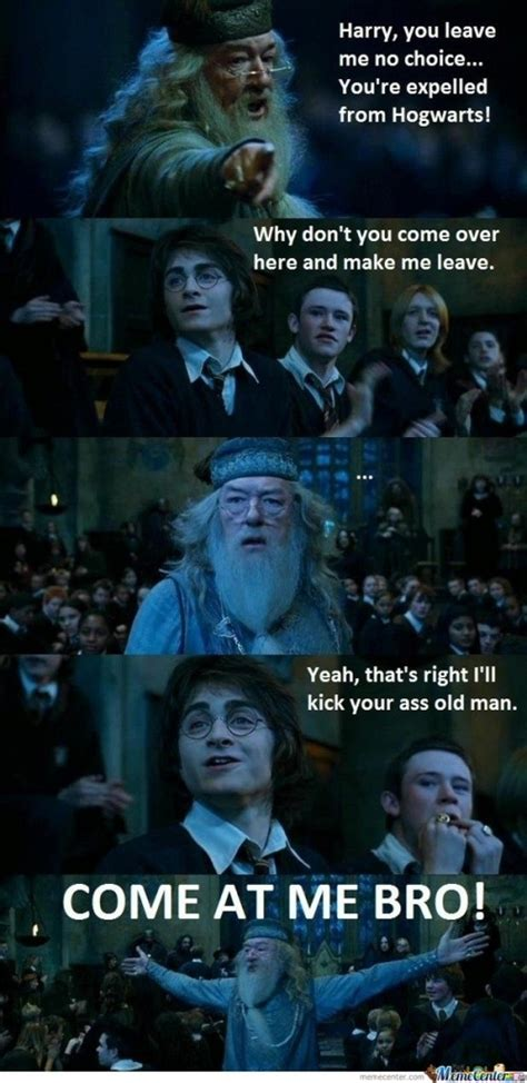Hary Potter Memes - 62 best images about harry potter memes on pinterest