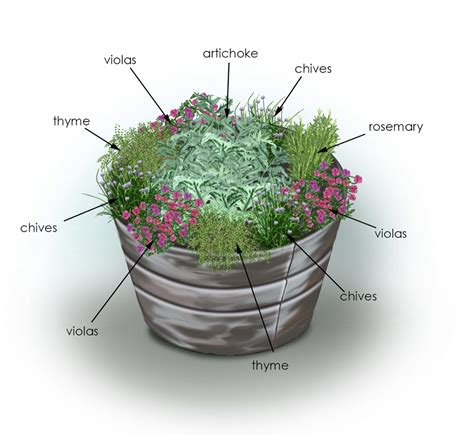 Herb Garden Planter Container by Plant This Herbs And Artichoke Container Garden Complete