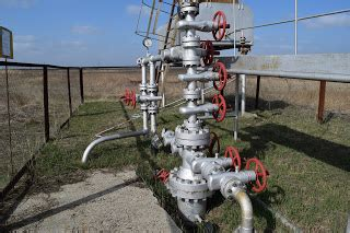 wellhead valves meet special application challenges