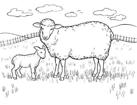 coloring pages of sheep dogs coloring pages sheep coloring page sheep coloring pages of