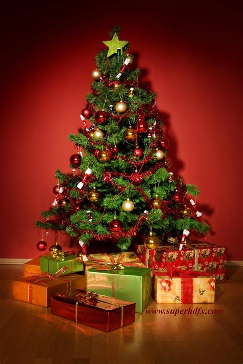 christmas tree hd images superhdfx