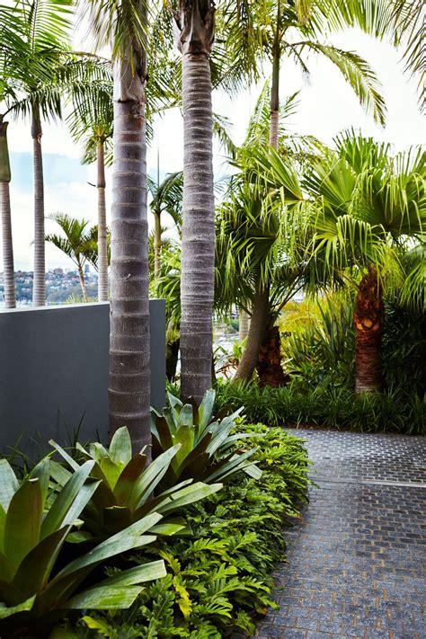sydney tropical garden design outdoor establishments
