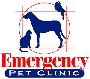 home page emergency pet clinic corpus christi
