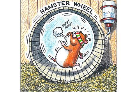hamster wheel hamster wheel indoor and outdoor play equipment
