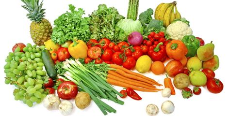 Vegetables Are For You why are fruits so healthy for you