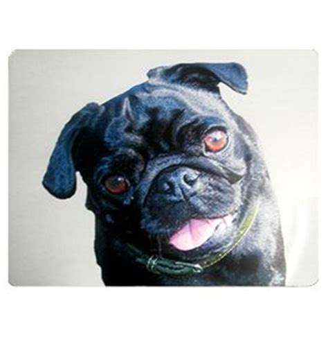 pug car accessories 48 best images about i pugs accessories on sleeve posts and car