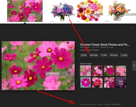 google images viewer google image search removes view image button and search