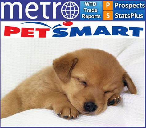 muzzle petsmart petsmart world trading profile and sourcing report world trade daily