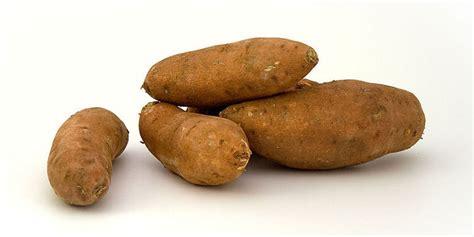 Batatas Keripik Pangsit Ubi Ungu ekstrak kulit ubi jalar ungu ternyata bisa obati diabetes merdeka