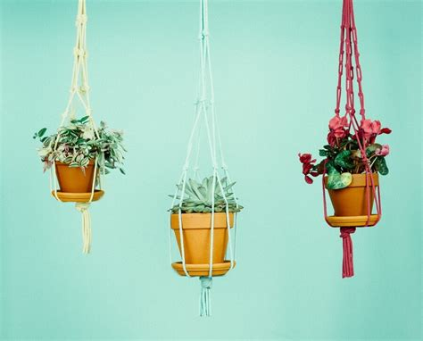 How To Make A Plant Hanger With Rope - 5 rope plant hanger ideas for a rustic touch