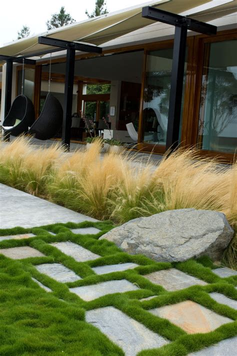8 uses for ornamental grasses and wheat in your landscaping savvy urbanite farmer