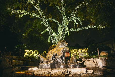 San Antonio Zoo   Zoo Lights
