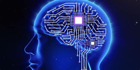la memoria secreta de 8449333067 estudio circuitos de memoria a largo plazo y corto plazo se forman al mismo tiempo sophimania