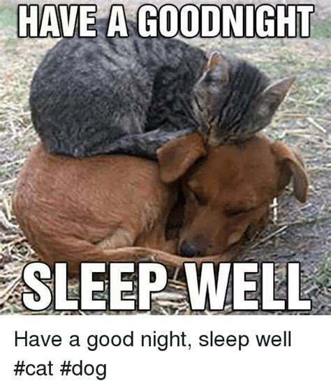 Have A Good Night Meme - have a good night meme have a goodnight sleep well have