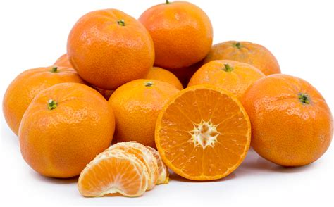 new year tangerine significance tangerines information and facts