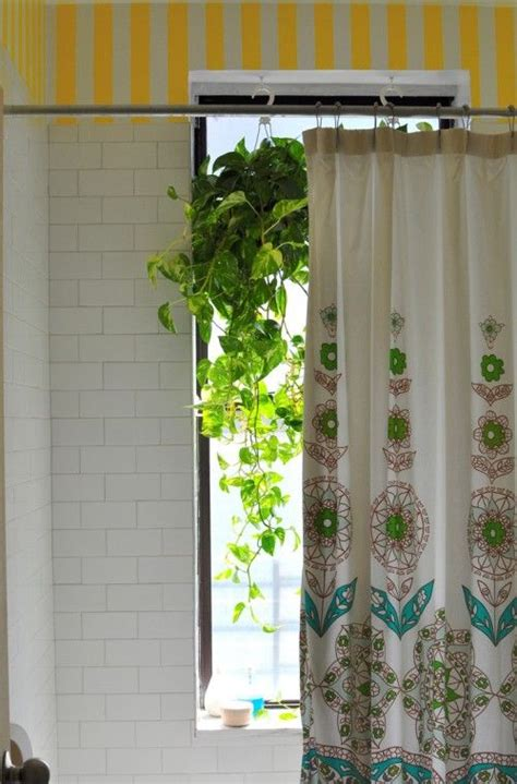 plants for bathroom with no windows shower bathroom plant curtain my temple pinterest