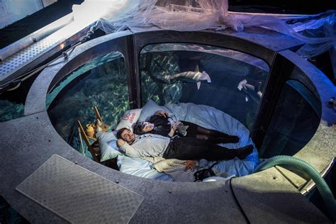 aquarium bed paris aquarium s underwater bedroom