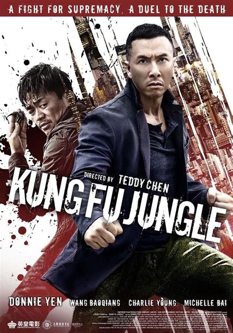 film cina kung fu kung fu jungle film 2014 senscritique