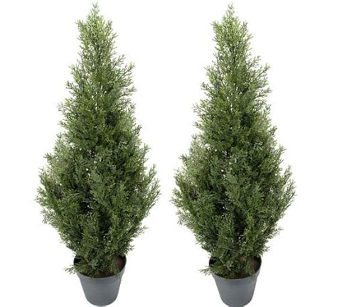 artificial outdoor topiary trees two pre potted 3 artificial cedar topiary outdoor indoor