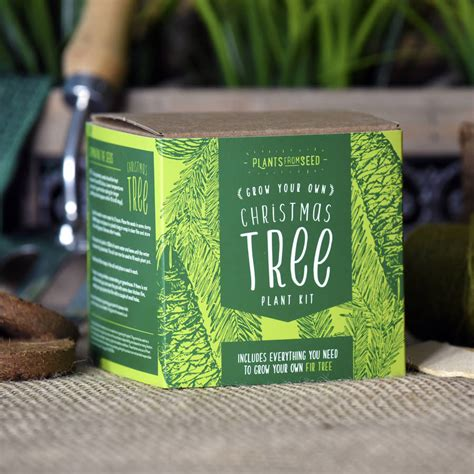 grow your own tree kit grown your own tree kit by plants from seed notonthehighstreet