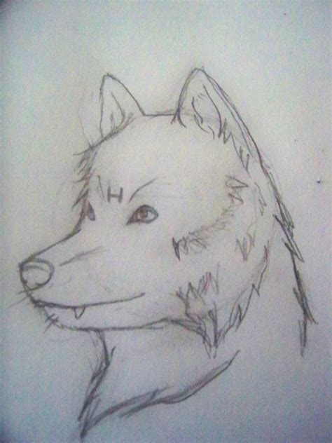 drawings hard sketches stupid wolves so hard to draw by dollydecember on deviantart