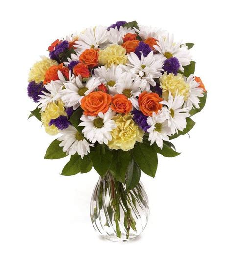 Buy Flowers by Delightful Daisies Florists Florists
