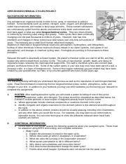 Biogeochemical Cycles Poster Project Biogeochemical