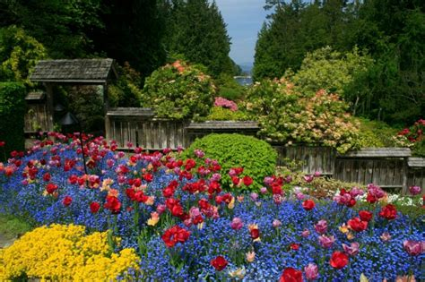 giardino botanico montecarlo i giardini pi 249 belli mondo foto 1 di 5 radio monte