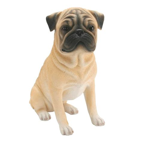 mid size dogs best of breed mid size dogs chihuahua labrador spaniel staffie boxer pug setter ebay