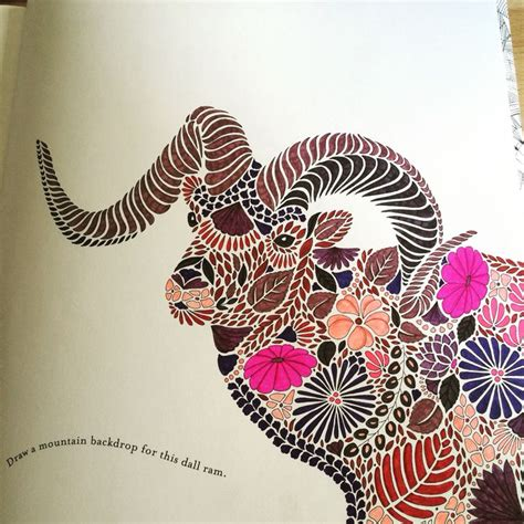 dall ram  millie marotta animal kingdom colouring book