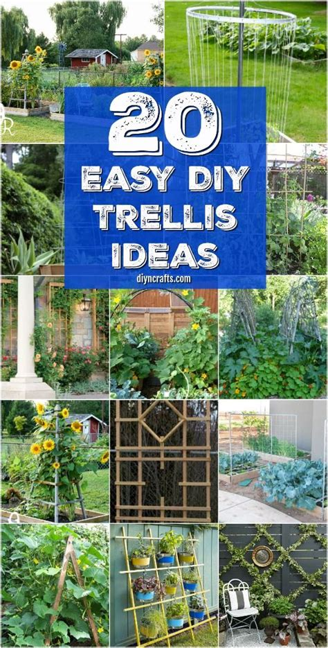 enrejado easy 20 easy diy trellis ideas to add charm and functionality