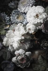 Grey And White Bedroom Ideas - best 25 floral wallpapers ideas on pinterest girls bedroom wallpaper floral bedroom decor