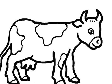 coloring pictures of a coloring pictures of cows 1468