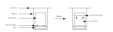Couche Paper Definition La Chromatographie Analyser La
