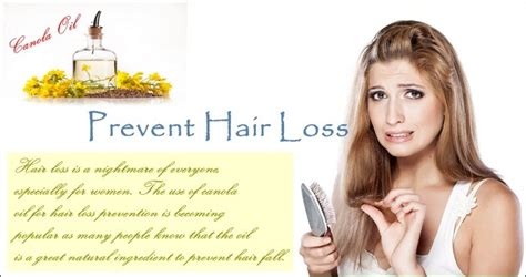 june 2015 stop hair loss 17 benefits uses on canola oil for hair treatment hair