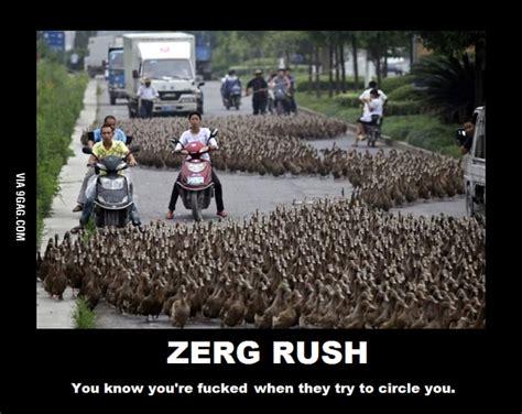 Zerg Rush Meme - zerg rush ftw 9gag