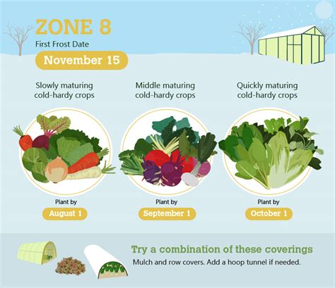 zone 8 gardening winter gardening yes it is possible and here s how