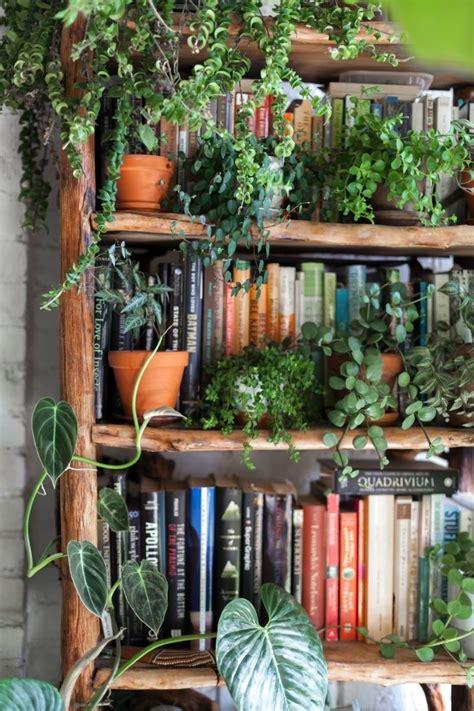 living   plants   brooklyn apartment apartment