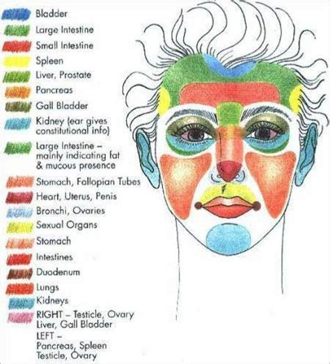 face mapping on pinterest estheticians facial massage face pressure points reflexology pinterest pressure