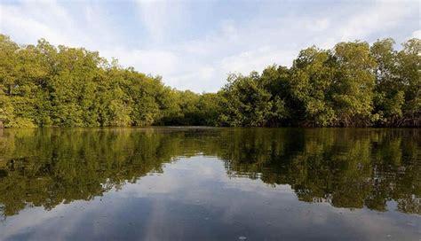 imagenes de santuarios naturales estos son los 7 mejores destinos naturales del per 250 para