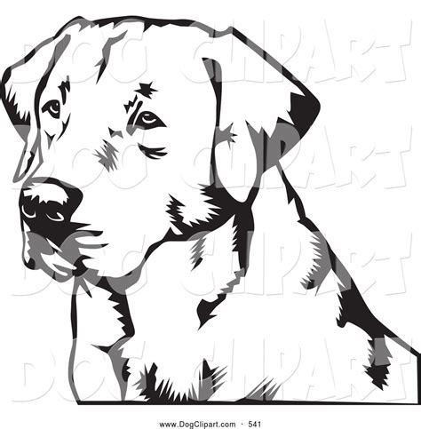 are there black golden retrievers golden retriever black and white clipart