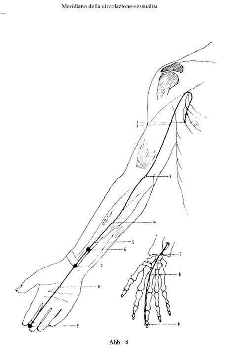 tavole meridiani energetici acupuntora cuerpo mente y alma en equilibrio p 225 3