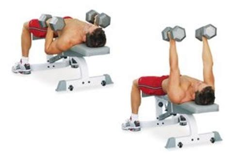 dumbbell bench press variations flat bench dumbbell press bodybuilding wizard