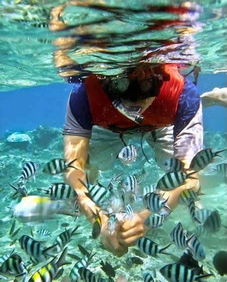 percutian  pulau redang day trip snorkeling pakej