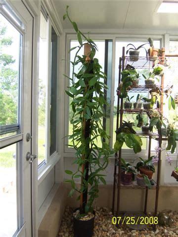 tiberian growdome system plants indoor garden grow