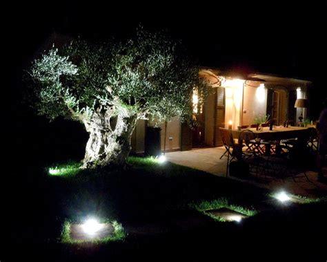 illuminazione alberi illuminazione alberi da giardino fantajumpy