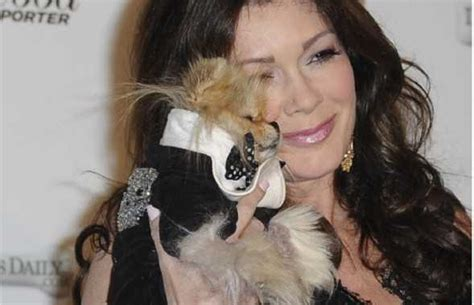 gigi pomeranian vanderpump s giggi is and best pooch out there popdust