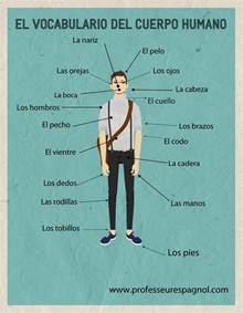 spanish worksheets worksheet amp workbook site