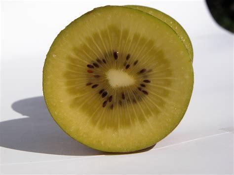 image after photos fruit kiwi green seed seeds pit